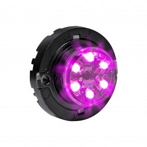 SnakeEye-III 6W Surface-Mount Hideaway Light - Purple